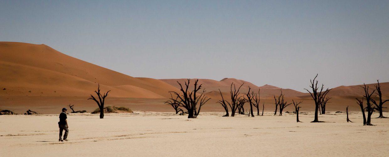 Namibia Namib desert Sossusvlei Deadvlei